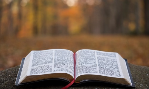 Bible, Word